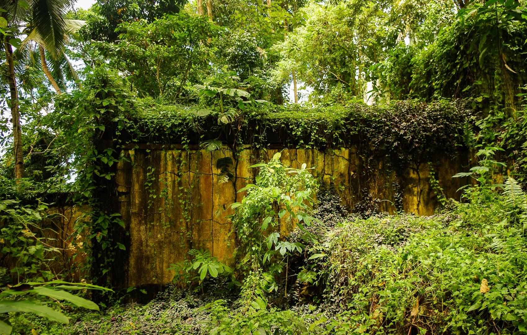 The ruins of the unfinished hotel, Philippines