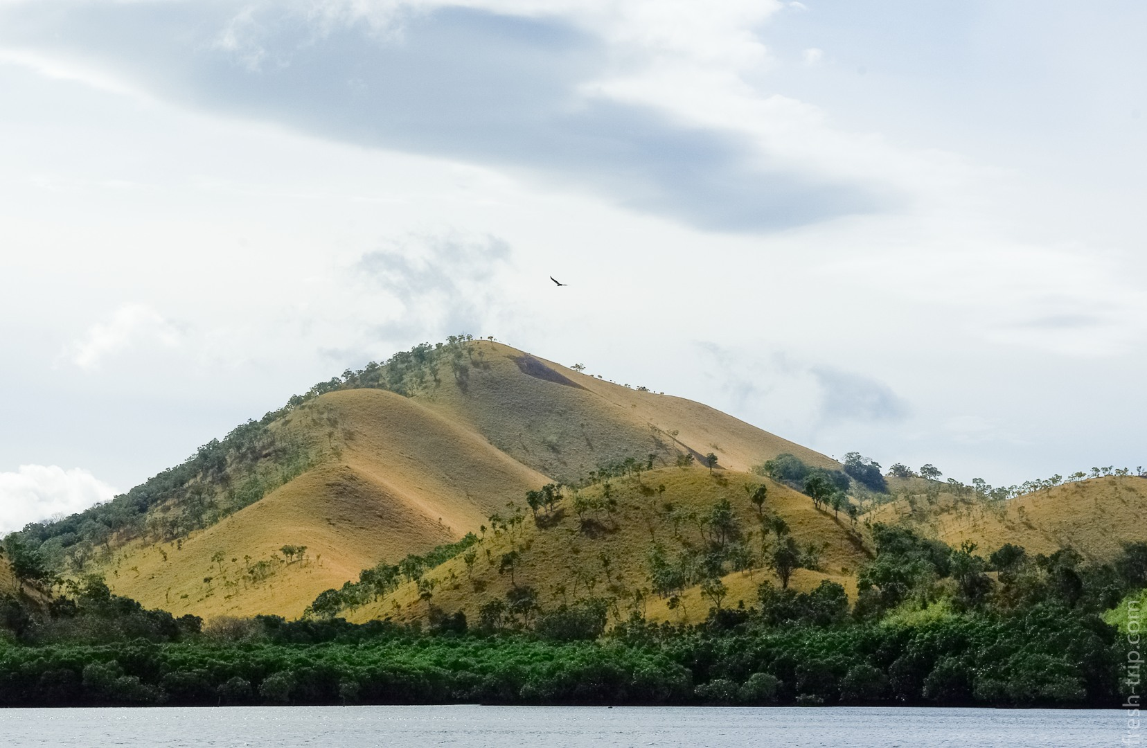 Hills, Busuanga Island, Philippines