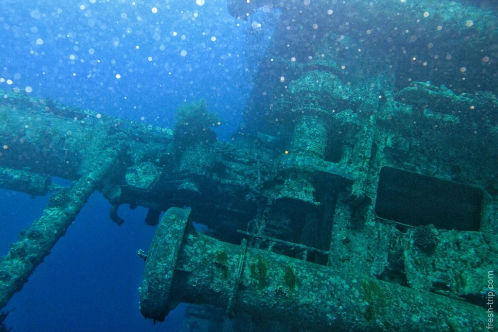 Wreck diving on Cedar Pride
