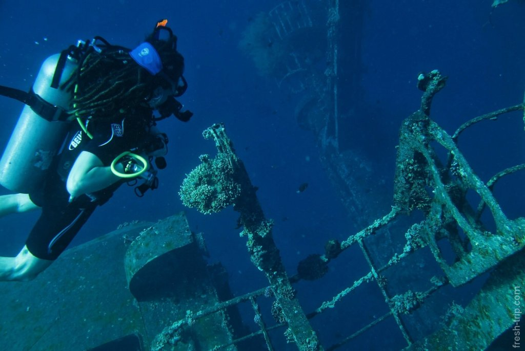 wreck diving on Cedar Pride